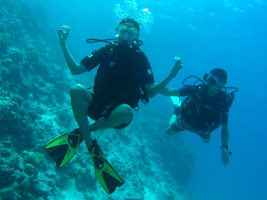 Beginner Scuba Dive Course