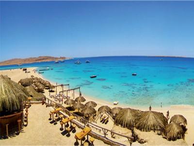 Egypt International Diving
